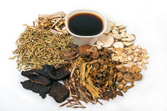 Phytothérapie traditionnelle chinoise et herbes organiques photographie stock libre de droits