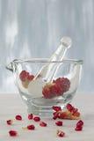 Phytotherapie - naturalna cnota granatowiec Zdjęcie Stock