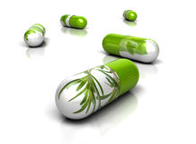 Phytotherapy And Phytopharmacology Stock Images