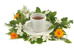 Cup of herbal tea and flowers. Phytotherapy concept with a cup of herbal tea and flowers on a white background royalty free stock images