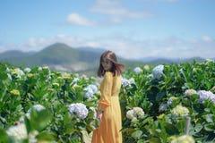 Piękna Azjatycka kobieta w kolor żółty sukni spacerze w hortensja kwiatów ogródzie obraz stock