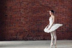 Piękna młoda kobieta jest ubranym białego spódniczka baletnicy iść pokazywać jej występ fotografia stock