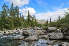 Piękna zimna północna natura: góry, skały, skały i jezioro otaczający, drzewami i mech Khibiny góry w rosjaninie zdjęcia royalty free