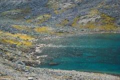 Piękna zimna północna natura: jaskrawy - zielony mech i strumienie zdjęcia royalty free