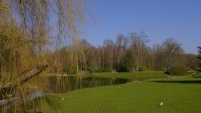 Piękni ogródy Leeds 20, 2019 Roszują w Zjednoczone Królestwo, Kent Zjednoczone Królestwo, Luty -, - zbiory