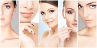 Piękni, zdrowi i młodzi żeńscy portrety, Kolaż różne kobiet twarze Twarz udźwig, skincare, chirurgia plastyczna zdjęcie stock