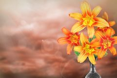 Piękny żywy leluja bukieta bukiet w ceramicznej wazie z pustym miejscem dla twój teksta na lewicie na barwionym niebie z chmury t fotografia stock