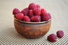 Piękny gliniany naczynie z malinkami na pielusze zdjęcie stock