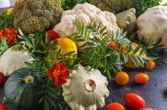 Piękny obrazek warzywa kabaczek, kalafior, czereśniowi pomidory i brokuł Naturalna tekstura warzywa, obraz stock