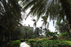Piękny park w tropikalnym kurorcie obraz stock