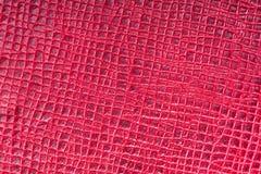 Piękny tło czerwona prawdziwa skóra Zakończenie macros obrazy royalty free