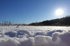 Piękny zimy landscape jaskrawy zimy słońce, genialny śnieg i dryfy, zdjęcie royalty free