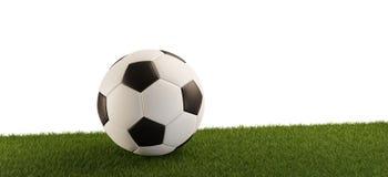 Piłki nożnej piłka na trawy panoramie odizolowywał białego tło 3d-illustration ilustracji