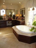 Pièce élégante de Bath Photos stock