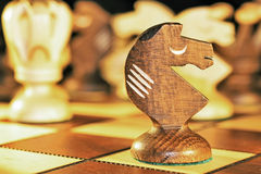 Pièce d'échecs - le chevalier Photo stock