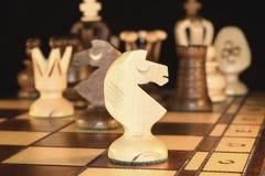 Pièce d'échecs - le chevalier Images libres de droits