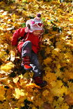Pièce d'automne photographie stock libre de droits