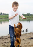 Pièce de garçon sur le côté de lac avec le crabot Photographie stock libre de droits