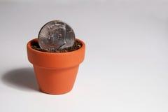 Pièce de monnaie américaine du dollar plantée dans Clay Pot Photographie stock libre de droits