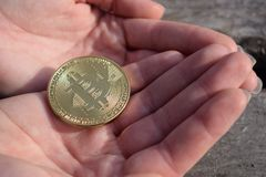 Pièce de monnaie d'or de bitcoin dans des paumes femelles sur le fond en bois photo stock