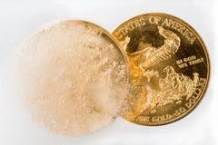 Pièce de monnaie d'Eagle d'or émergeant du congélateur Image libre de droits