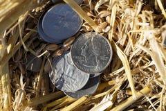 Pièce de monnaie dans la paille Photo stock
