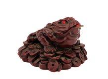 Pièce de monnaie de richesse de crapaud de grenouille dans la bouche d'isolement sur le blanc Photo stock