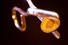 Pièce de monnaie du Suisse 5 Photographie stock libre de droits