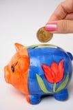 Pièce de monnaie et porcin Images stock