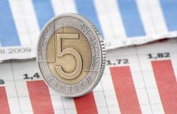 Pièce de monnaie polonaise du Zloty cinq sur le diagramme de journal Photo libre de droits