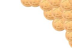 Pièce de monnaie polonaise sur le fond blanc Images stock