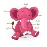 Pièce de vocabulaire d'éléphant de vecteur de corps Images stock