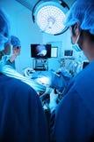 Pièce en fonction de docteur vétérinaire pour chirurgical laparoscopic Image stock