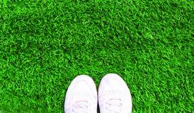 Pièce les espadrilles de sports de blanc sur le fond texturisé d'herbe verte Image stock