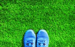 Pièce les espadrilles de sports de bleu sur l'herbe verte texturisée Images libres de droits