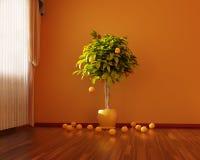 Pièce orange Images libres de droits