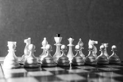 Pièces d'échecs de blanc en noir et blanc Photos libres de droits