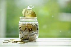 Pièces d'or dans un pot en plastique Devise de la Thaïlande Économie et savi Photos stock