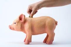 Pièces de monnaie économisantes d'une personne à une tirelire photographie stock libre de droits