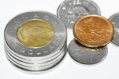 Pièces de monnaie canadiennes d'ours blanc Photos stock