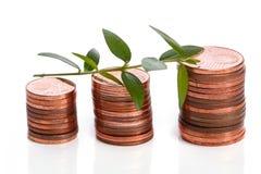 Pièces de monnaie d'euro cent et pousse verte Photo libre de droits