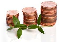 Pièces de monnaie d'euro cent et pousse verte Photographie stock libre de droits