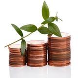 Pièces de monnaie d'euro cent et pousse verte Photo stock