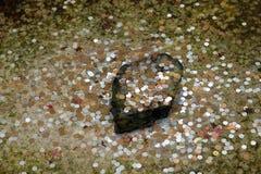 Pièces de monnaie dans l'étang Photo libre de droits