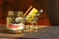 Pièces de monnaie dans le pot d'argent avec le label d'achats et les cartes de crédit, caddie Photographie stock