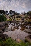Pièces de monnaie dans un petit étang japonais avec des réflexions photos libres de droits