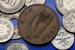 Pièces de monnaie de l'Irlande Photographie stock