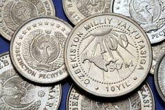 Pièces de monnaie de l'Ouzbékistan Images libres de droits