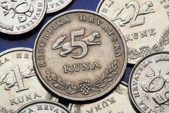 Pièces de monnaie de la Croatie Photographie stock libre de droits
