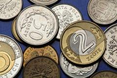 Pièces de monnaie de la Pologne Images stock